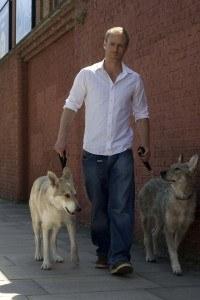 Dog Training In London Nigel Reed