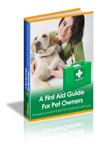 A First Aid Guide For Pet Owners