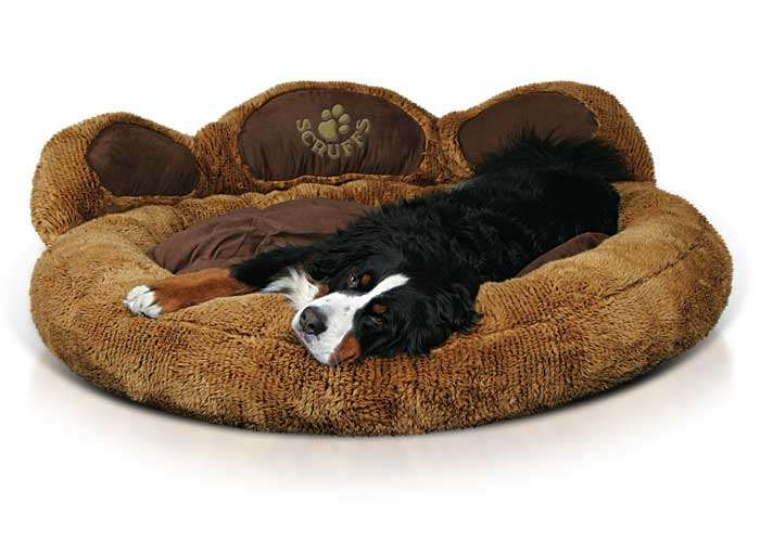 Scruffs Grizzly Bear Bed