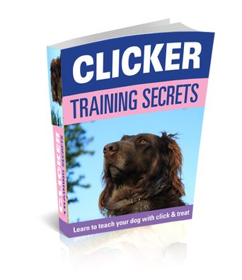 Clicker training for dogs book