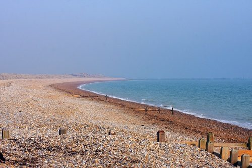 4 Dog Friendly Beaches In The South East Of England You Should